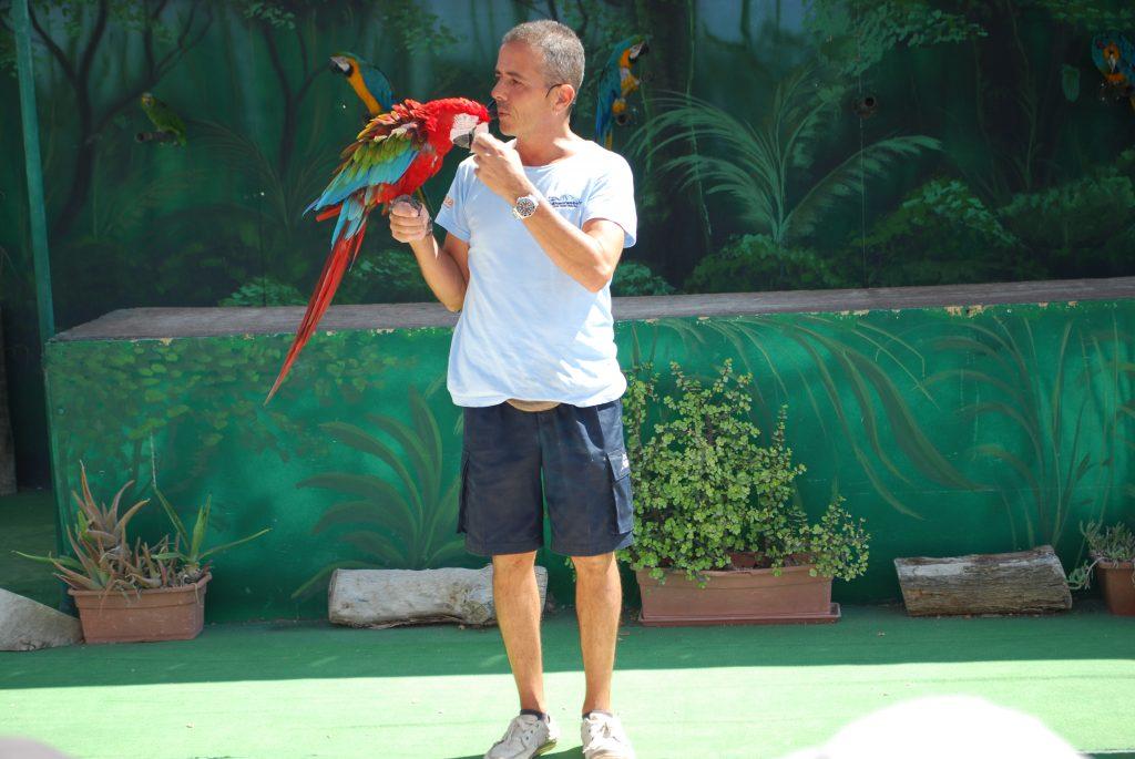 Papugi w Mediterraneo Marine Park